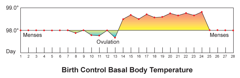 basal_body_temperature-e1563780867192.png